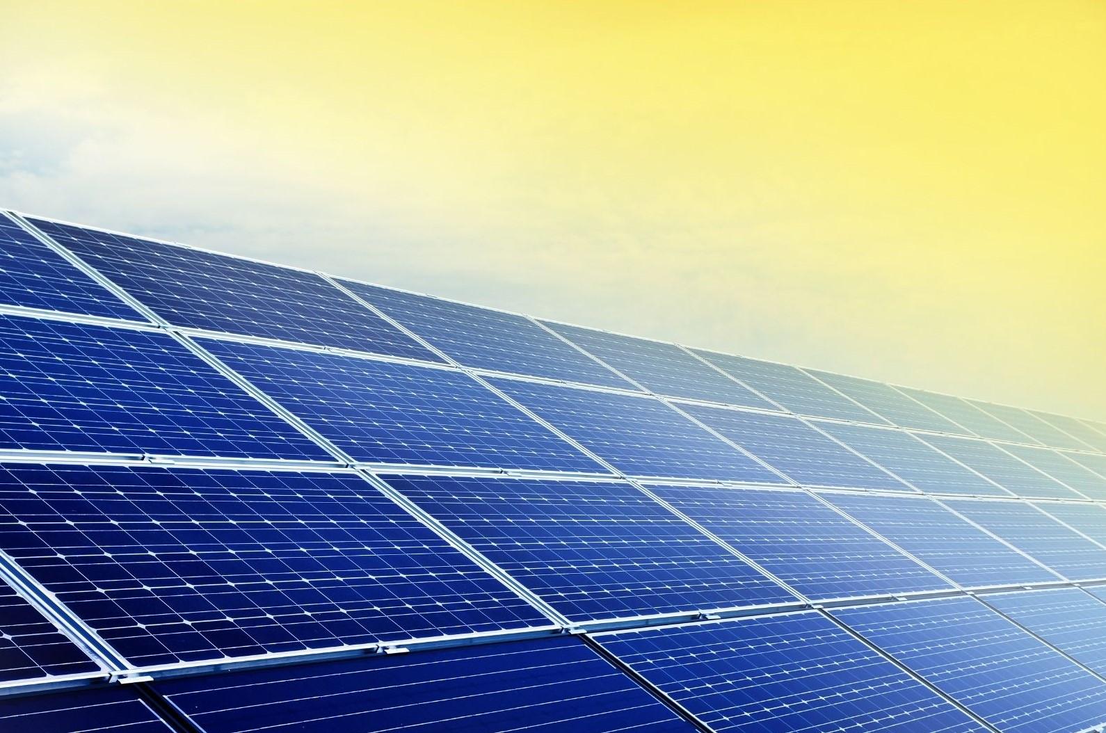 Solar Panel ( Company )